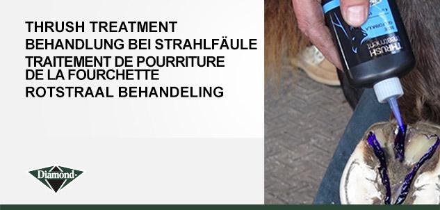 Royal Kerckhaert Horseshoes > Thrush Treatment