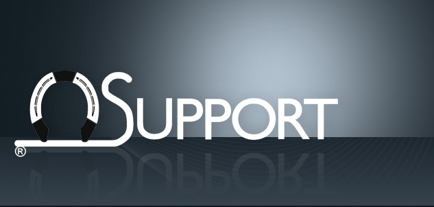 support aspx